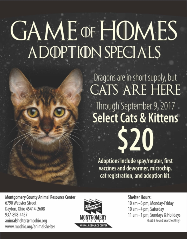 CAT Adoptions Game of Homes